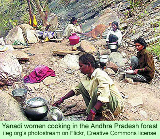 Yanadi women cooking in the Andhra Pradesh forest