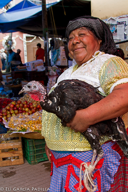 A Zapotec lady carrying her turkey in Tlacolula, Oaxaca