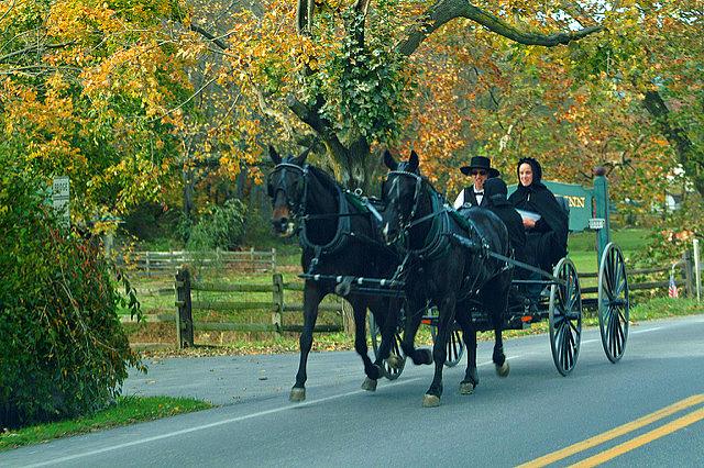 Lancaster County Amish