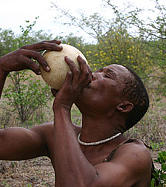 A San man drinking water from an ostrich egg shell