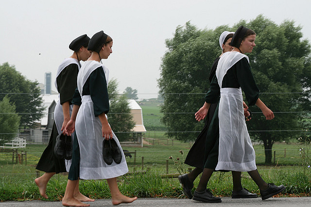 Lancaster County Amish