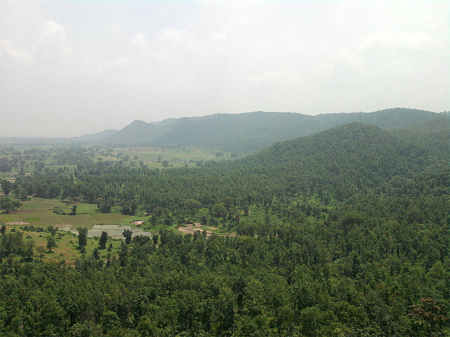 The forests of Jharkhand (Photo by Kaurun in Wikimedia, Creative Commons license)