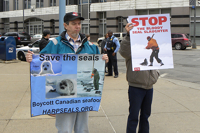A protest against seal hunting at the Canadian consulate in Minneapolis, March 2010 (Photo by Fibonacci Blue on Flickr, Creative Commons license)