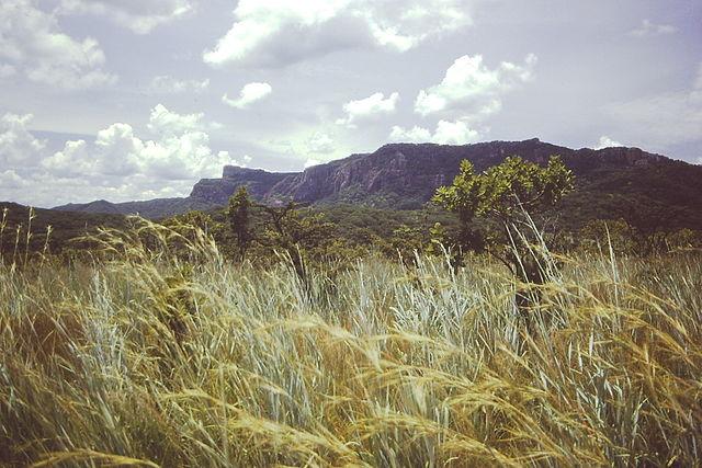 Rift Valley escarpment along the northern shore of Lake Rukwa