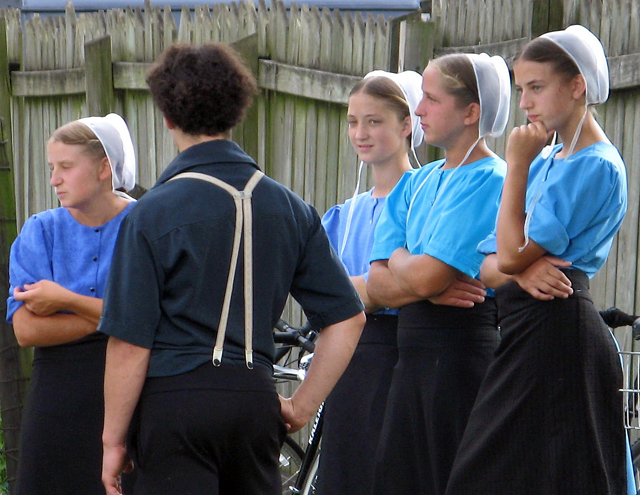 Some Amish in Lancaster County