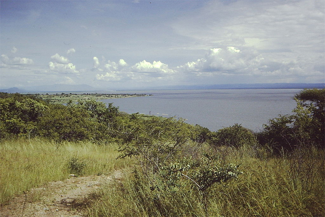 The shore of Lake Rukwa