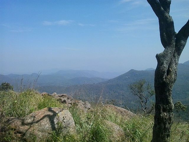 The Sirumalai hills in the Dindigul District of Tamil Nadu