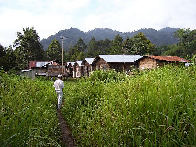Some Semai houses in Kampung Asli Rening