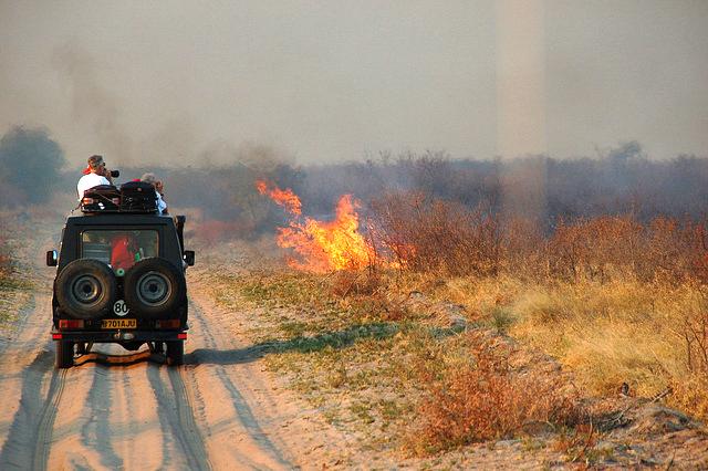Driving past a wildfire in the Kalahari Desert