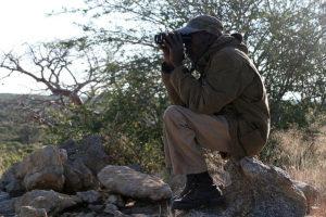 Oryx hunting in Namibia