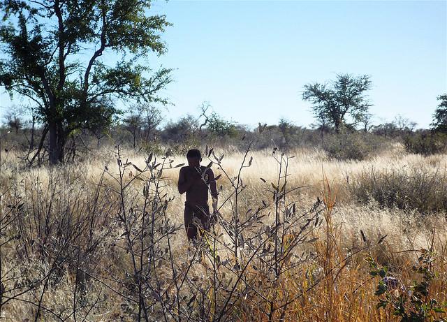 A Ju/'hoan walking in the Nyae Nyae Conservancy
