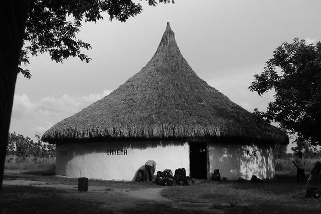 A Piaroa churuata