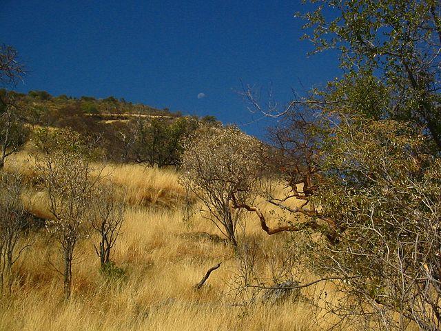 The Otjozondjupa Region of Namibia