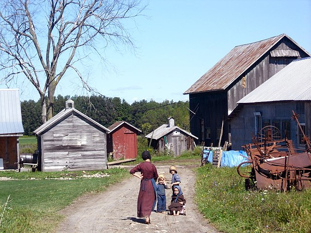 Amish farm kids near Morristown, New York