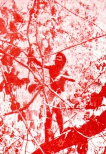 The cover photo on Adhikary's book Society and World View of the Birhor shows a Birhor man cutting Bauhinia vines in a forest tree