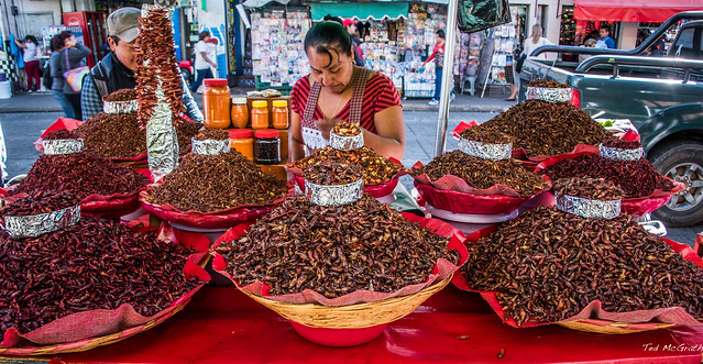 Chapulines (grasshoppers) for sale in a Oaxaca market