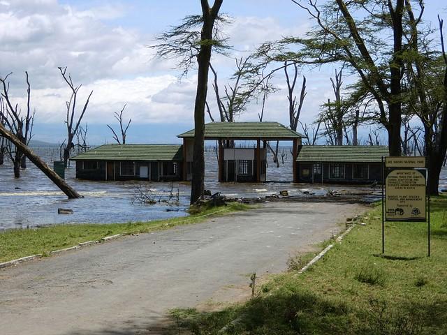 A National park in Kenya after a flood (Photo by Linda De Volder on Flickr, Creative Commons license)