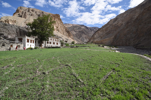 Agricultural fields near a village along the Markha River (Photo by Chris Hunkeler on Flickr, Creative Commons license)