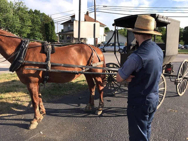 An Ohio Amish roadside salesman (Photo by Tara Herberger on Flickr, Creative Commons license)